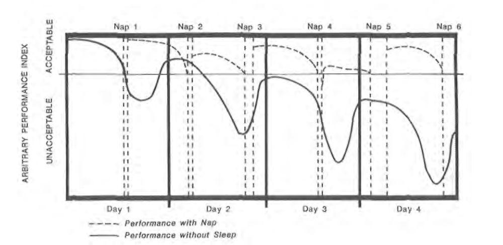 Sonno polifasico - l'importanza di dormire per l'efficienza
