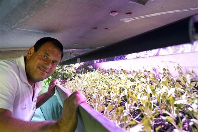 Velisti italiani - Matteo Miceli - L'orto a bordo di Eco40
